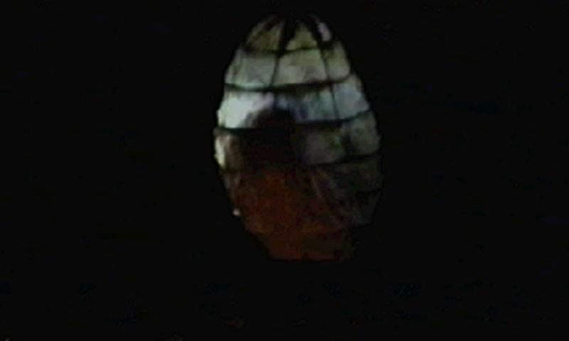 1996-09-04-SF-omfintlig-tv12-hatch